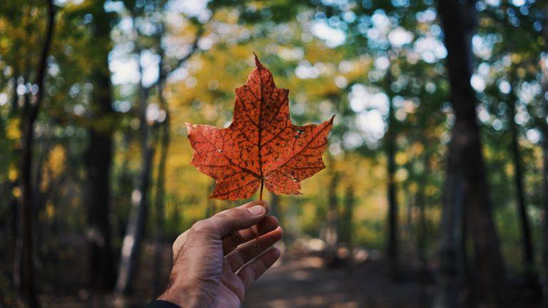 Canadá Mejor País Mundo
